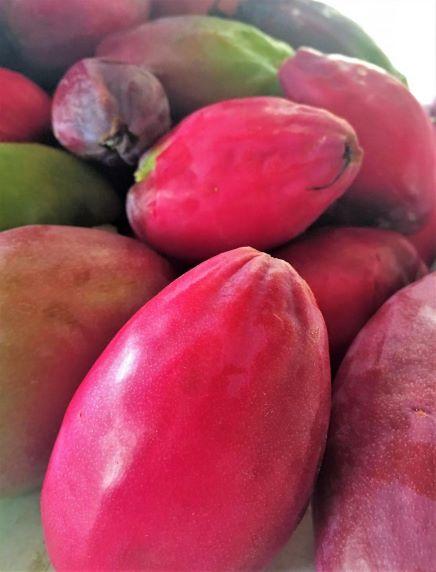 Edible Cereus peruvianus fruit (eaten raw, used to make wine and jams).